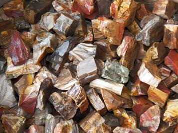 Petrified Wood, Red, green, madagascar, arizona, rough rock, tumbling, tumbler